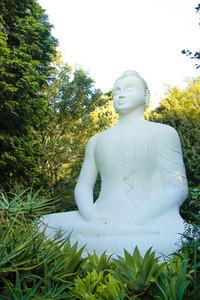 Buddhist Retreat Centre 5