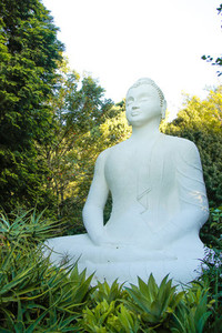Buddhist Retreat Centre 5