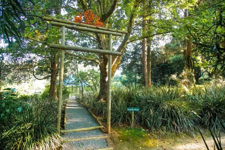Buddhist Retreat Centre 12