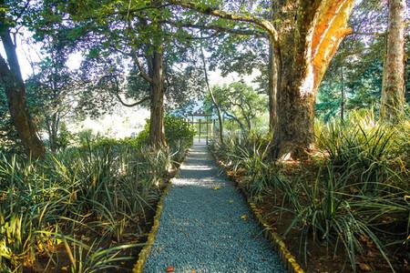Buddhist Retreat Centre 13