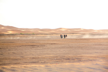 Sahara Desert  Morocco 2