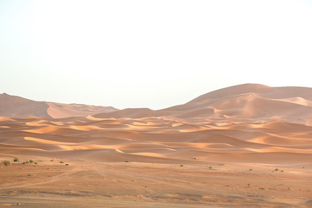Sahara Desert  Morocco 3