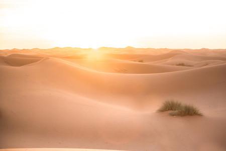 Sahara Desert Morocco 5