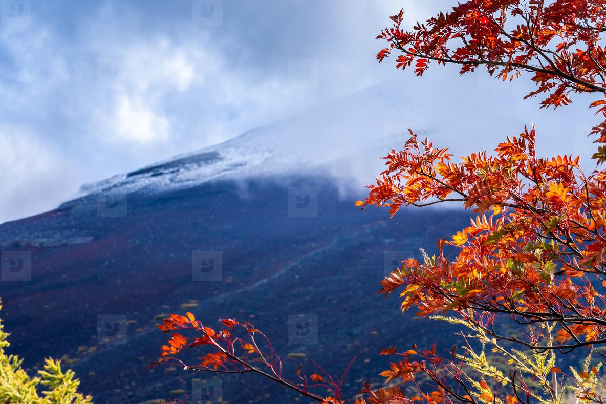 Background close up mount fuji