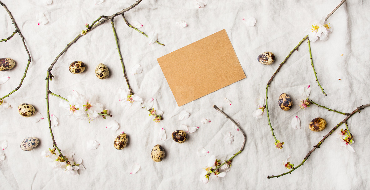 Easter holiday flat lay with quail eggs and almond tree branches