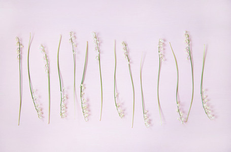 Flat lay of lily of the valley flowers over pink background