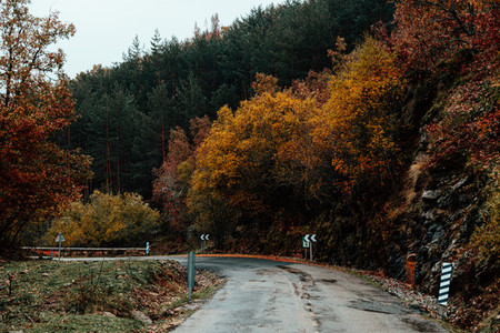Mountain road crossing a forest with autumn colors