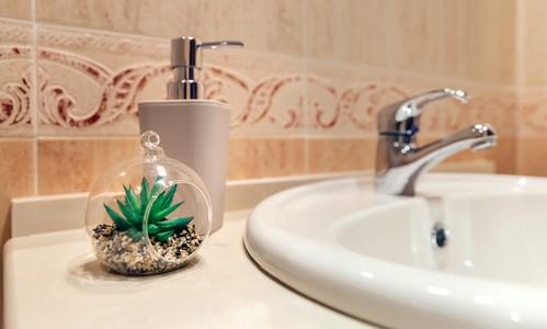 Washbasin with tap  soap dispenser and plant