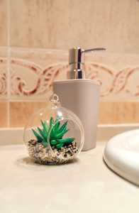 Bathroom detail with soap dispenser and plant