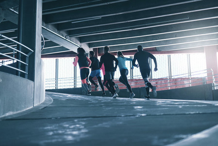Team of runners working out
