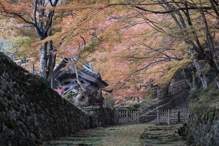 Autumn193119