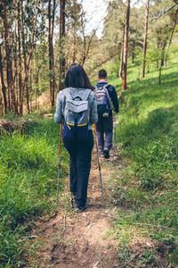 Couple of hikers doing trekking