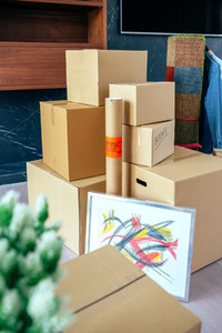 Stacked moving boxes and plant