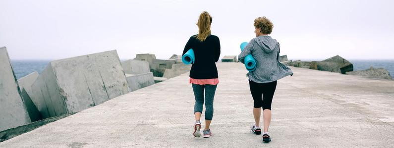 Back view of women walking by sea pier