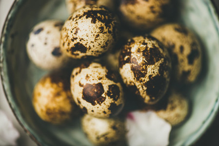 Easter holiday Spring mood flat lay with quail eggs