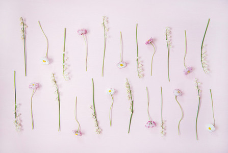 Flat lay of lily of the valley and daisy flowers over pastel pink background