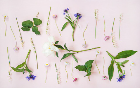Flat lay of lily of the valley cornflower daisy and peony garden flowers