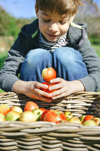 Happy kid playing with apples over wicker basket