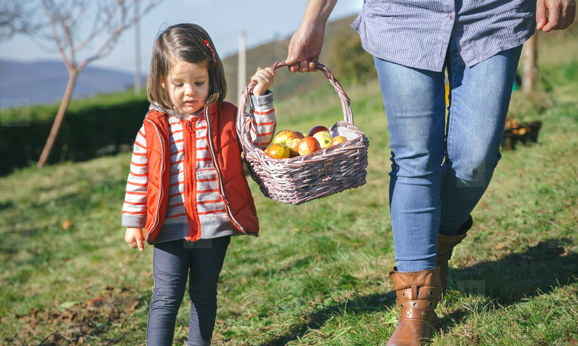 Little girl and woman carrying basket with apples