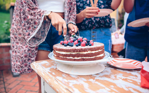 Woman cutting naked chocolate cake in a summer party