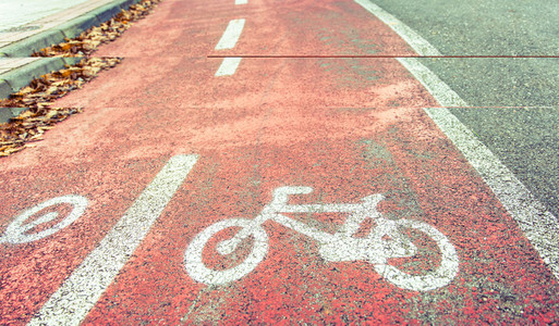 Bicycle road symbol on bike lane with autumn leaves