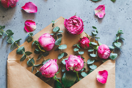 Pink roses in the envelope on a grey background  Flat lay flowers composition  top view  The concept of greetings and celebration