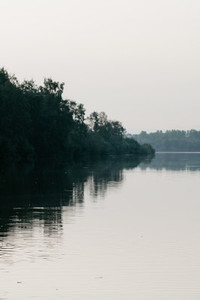 Moody landscape of a river and dark forest near