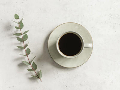 Cup of black coffee on a white textured table with a branch of eucalyptus  Top view  minimalism style