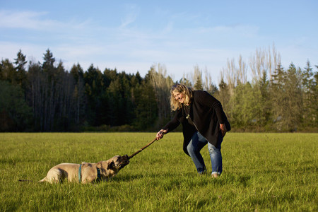 Woman and dog playing with stick in sunny rural field