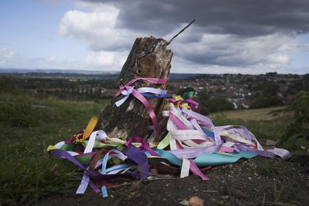 Colorful ribbons around Glastonbury Holy Thorn tree England