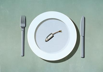 Half eaten sardine on plate