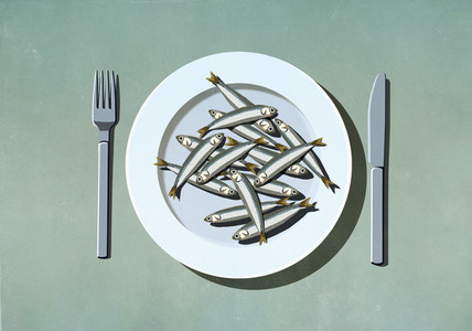 Bunch of sardines on plate