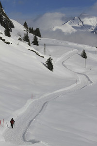 Snowshoer on sunny snow covered mountain trail  Switzerland