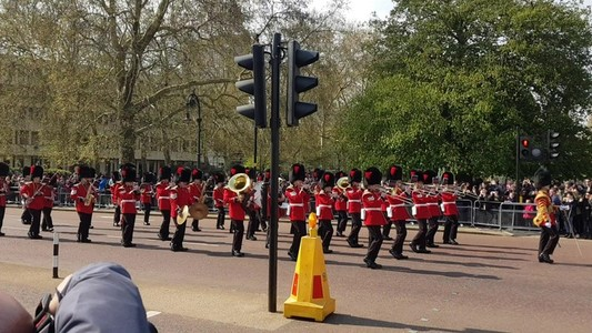 Changing of the guard ceremony on Buckingham palace in London