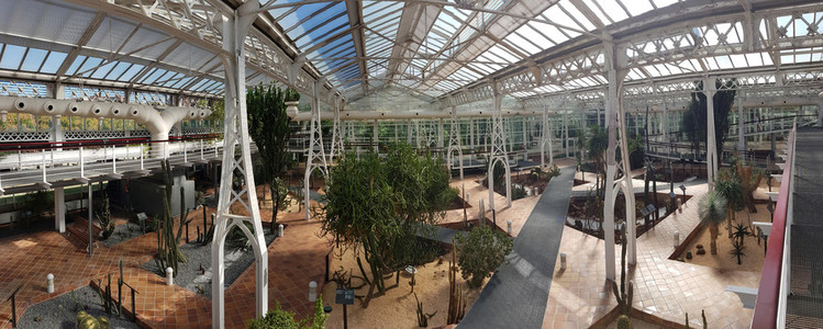MADRID  SPAIN  8th August  2019  Botanical garden in the crystal palace of Arganzuela