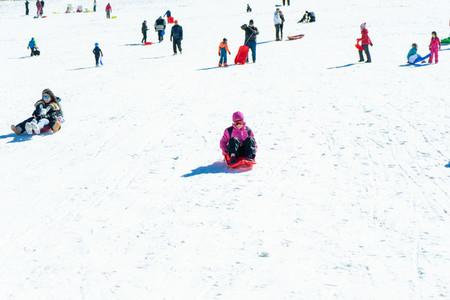 People coming down on sleds at Sierra Nevada ski resort