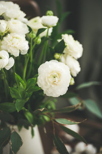 Spring white buttercup flowers in enamel jug curtain behind