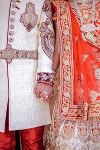 Indian Wedding Collection 3