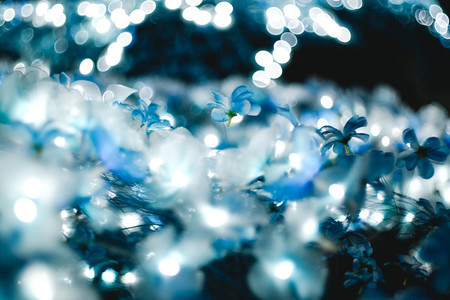 The light blue bokeh