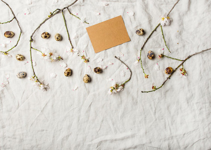Easter holiday flat lay with blooming almond tree brances and eggs