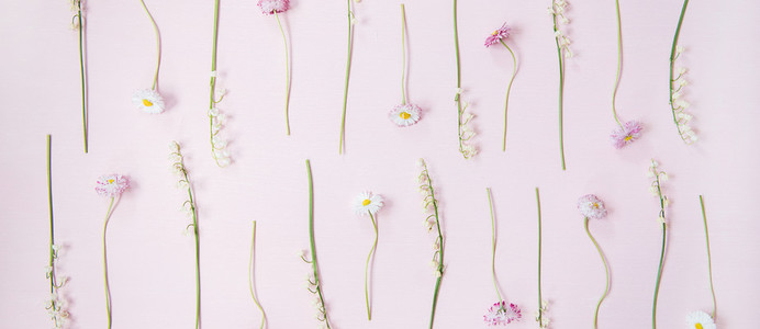 Flat lay of lily of the valley and daisy flowers over pastel pink background wide composition