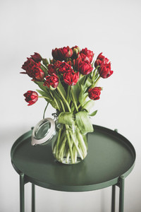 Bouquet of fresh Spring red tulips in glass jar