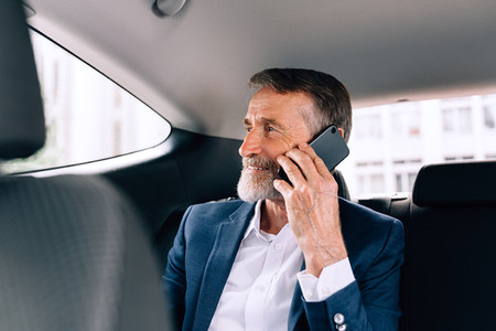 Mature businessman in car