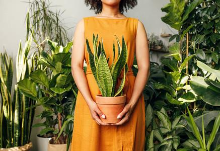 Unrecognizable florist woman