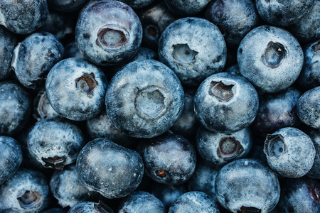 Blueberries food background