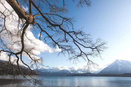 Lake Thun  Switzerland 1