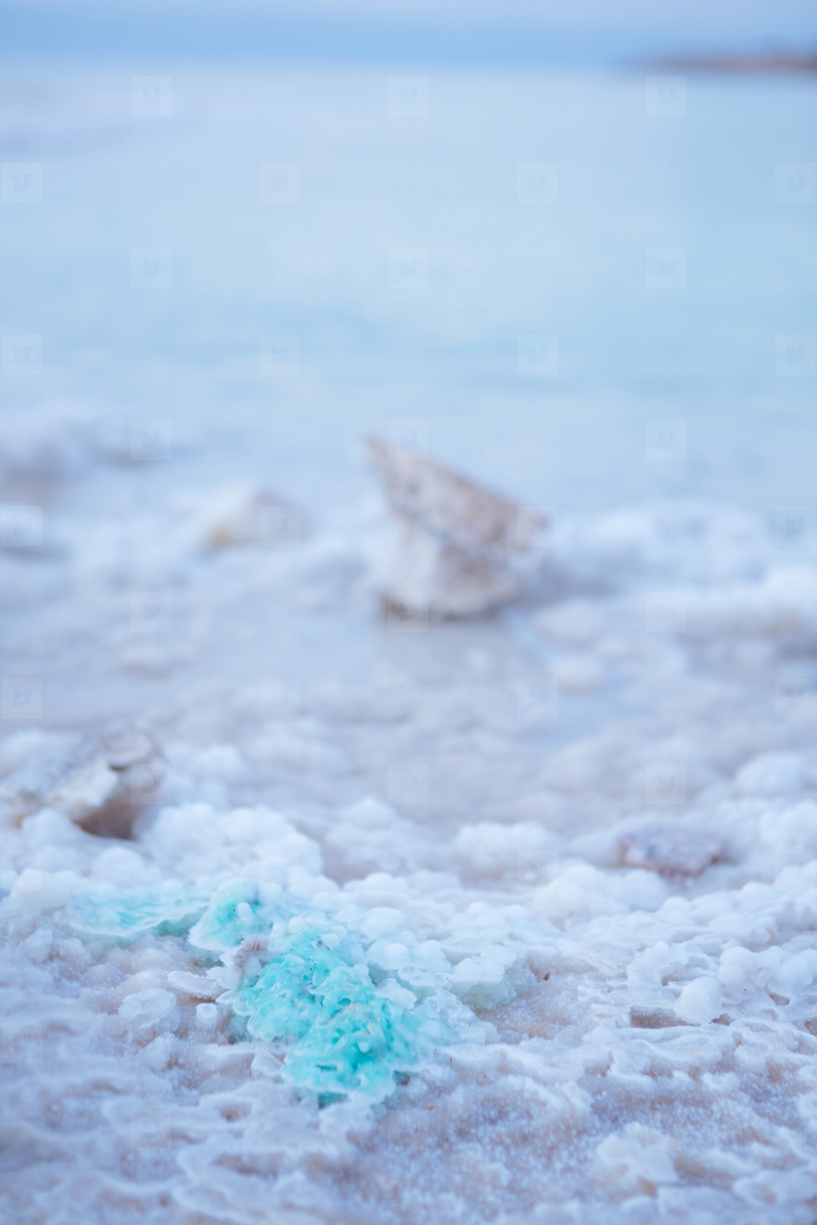 Dead Sea  Jordan 8