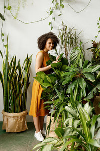 Beautiful woman botanist working