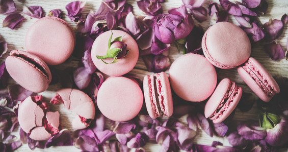 Sweet pink macaron cookies and rose buds and petals  close up