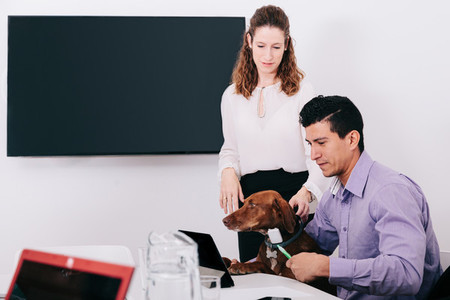 Two office workers with a dog watching a tablet